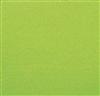 Serviette papier celiouate 38 x 38 pistache colis de 900