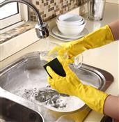 Gant ménage professionnel la paire