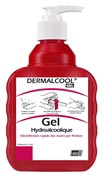 Dermalcool solution gel hydroalcoolique Deb 6 x 400 ml