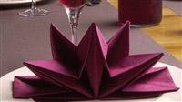 Acheter Serviette papier prepliee pliage etoile bordeaux etui de 12