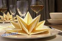 Acheter Serviette papier prepliee pliage etoile ivoire etui de 12