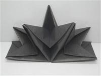 Acheter Serviette papier prepliee pliage etoile noire etui de 12