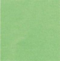 Acheter Serviette papier cocktail pistache CGMP 20 x 20 cm carton de 1800