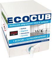 Acheter Ecocub vitre et surface 10 L