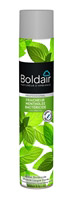 Acheter Boldair menthe bactéricide 500 ml