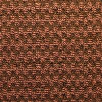 Acheter Tapis 3M Nomad Aqua 65 rouleau 10 x 2 m brun chataigne
