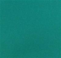 Acheter Serviette papier celiouate 38 x 38 vert lumière colis de 900