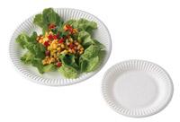 Acheter Assiette jetable carton blanche 23 cm colis de 500