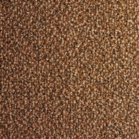 Acheter Tapis 3M Nomad Aqua 85 300 x 200 brun chataigne