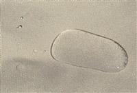 Acheter Toile d'ombrage coulissante tonnelle de jardin Andalouse adossee 2013