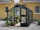 Acheter Serre de jardin Juliana Compact 5 m2 noire verre horticole