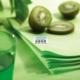 Acheter Nappe ronde jetable D240 vert anis non tissé paquet de 12